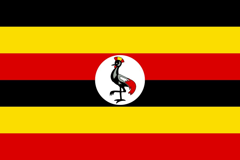 steag Uganda
