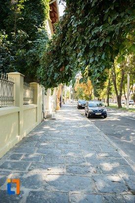 strada-cu-casa-eugen-schileru-din-braila-judetul-braila.jpg