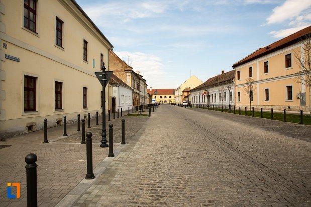 strada-din-alba-iulia-judetul-alba.jpg