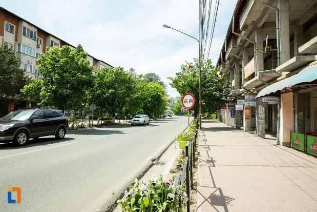 strada-din-orasul-bals-judetul-olt.jpg