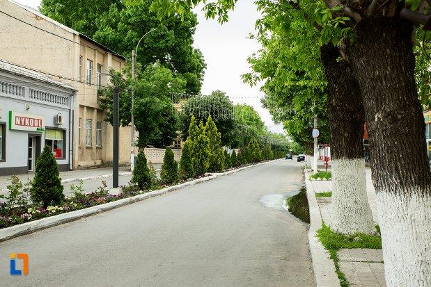 strada-din-orasul-corabia-judetul-olt.jpg