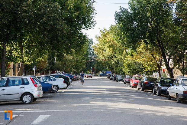 strada-din-orasul-mizil-judetul-prahova.jpg