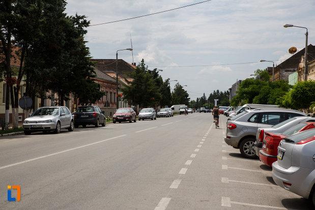 strada-principala-din-orasul-deta-judetul-timis.jpg