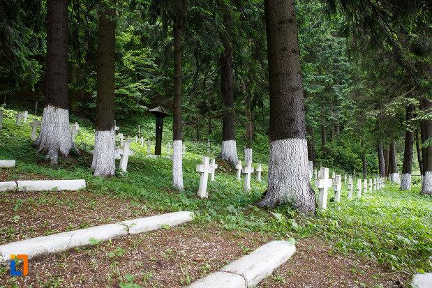 trepte-din-cimitirul-eroilor-din-azuga-judetul-prahova.jpg