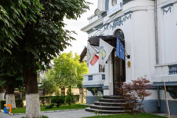 trepte-si-intrarea-in-casa-azi-rectoratul-universitatii-valahia-din-targoviste-judetul-dambovita.jpg