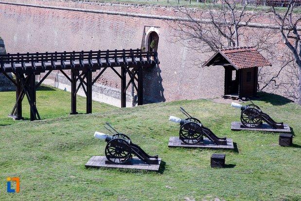 tunurile-de-pe-platforma-de-artilerie-din-alba-iulia-judetul-alba.jpg