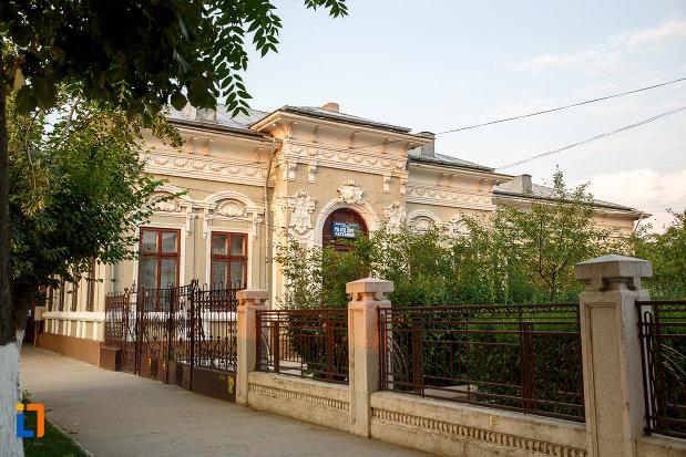 una-dintre-laturile-casei-zarzara-palatul-copiilor-din-alexandria-judetul-teleorman.jpg