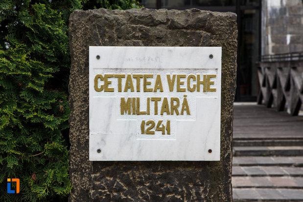 universitatea-europeana-dragan-din-lugoj-judetul-timis-placuta-cu-cetatea-veche-militata.jpg
