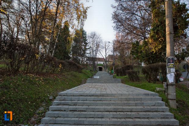 urcarea-in-parcul-cetatuia-din-cluj-napoca-judetul-cluj.jpg