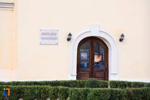 usa-de-la-palatul-apor-azi-universitatea-1-decembrie-rectorat-din-alba-iulia-judetul-arges.jpg