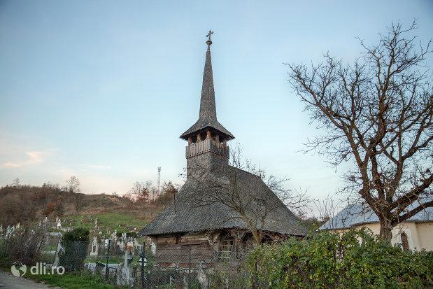 vedere-cu-biserica-de-lemn-din-creaca-judetul-salaj.jpg