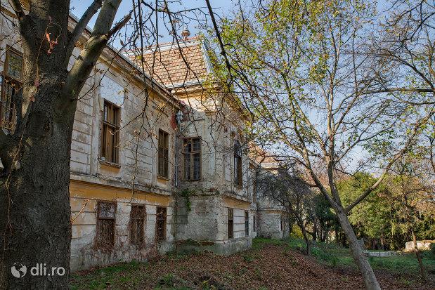 vedere-cu-castelul-stubenberg-din-sacueni-judetul-bihor.jpg
