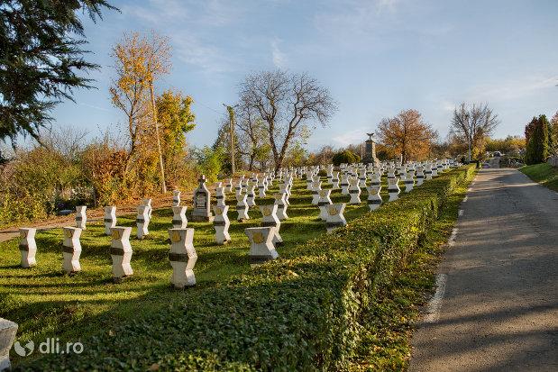 vedere-cu-cimitirul-eroilor-din-zalau-judetul-salaj.jpg