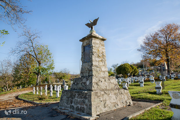vedere-cu-memorialul-eroilor-din-zalau-judetul-salaj.jpg