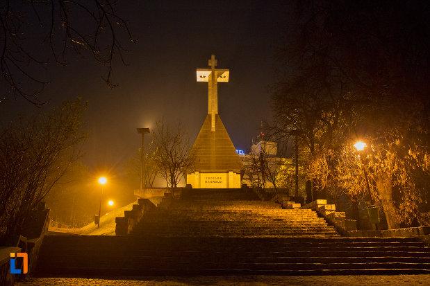 vedere-cu-monumentul-eroilor-neamului-din-cluj-napoca-judetul-cluj-noaptea.jpg