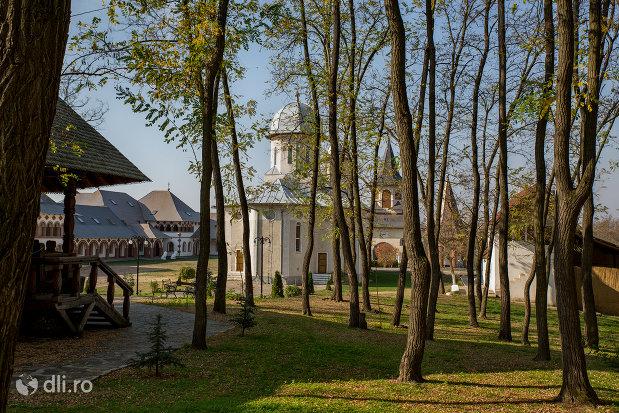 vedere-de-ansamblu-spre-manastirea-scarisoara-noua-judetul-satu-mare.jpg