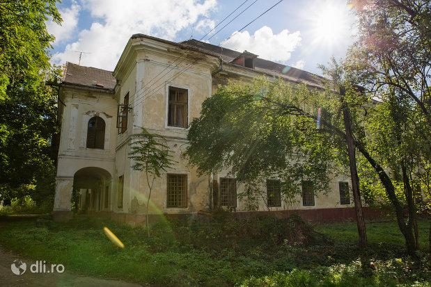 vedere-din-lateral-castelul-vecsey-din-livada-judetul-satu-mare-2.jpg