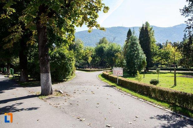 vedere-din-parcul-nicolae-titulescu-din-brasov-judetul-brasov.jpg