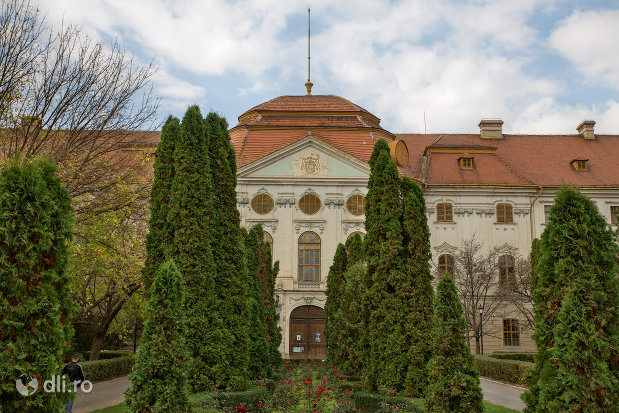 vedere-spre-palatul-episcopal-romano-catolic-azi-muzeul-tarii-crisurilor-din-oradea-judetul-bihor.jpg