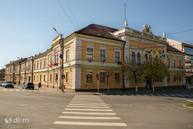 vedere-spre-primaria-municipiului-zalau-judetul-salaj.jpg