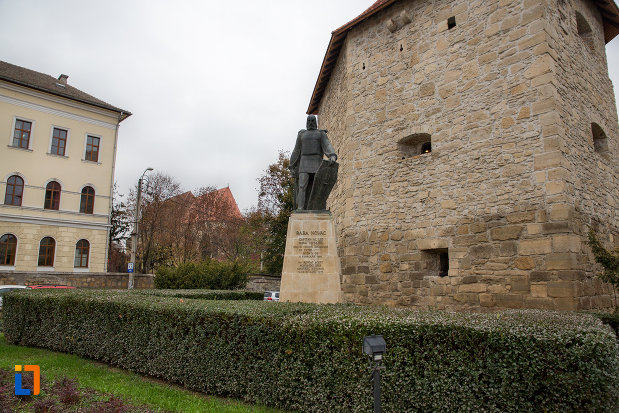 vedere-spre-statuia-lui-baba-novac-din-cluj-napoca-judetul-cluj.jpg