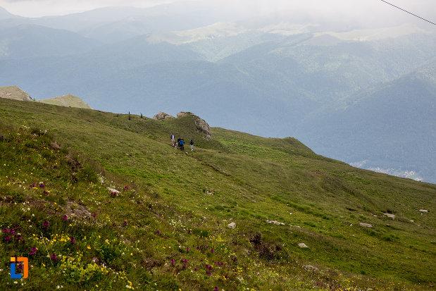 vegetatie-montana-si-stanci-telecabina-din-sinaia-judetul-prahova.jpg