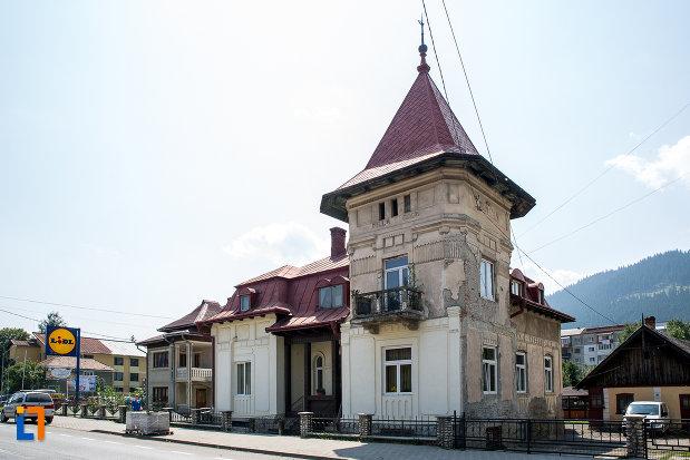 vila-coca-din-campulung-moldovenesc-judetul-suceava-vazut-din-departare.jpg