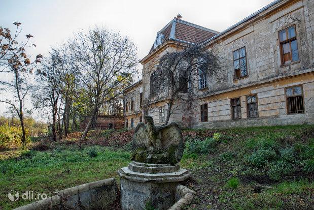 vultur-castelul-stubenberg-din-sacueni-judetul-bihor.jpg