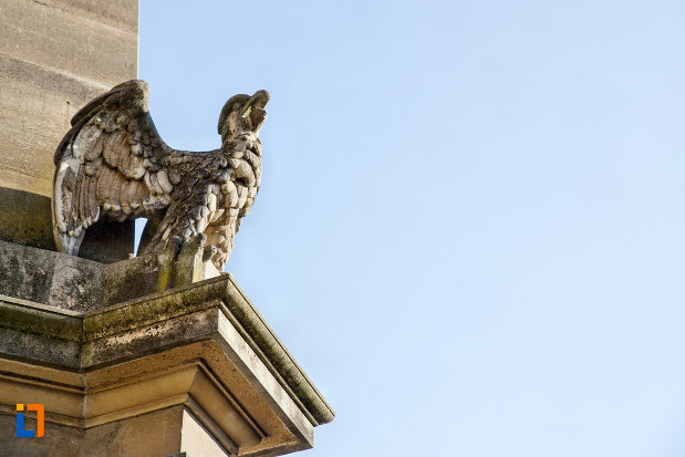 vultur-obeliscul-carolina-din-cluj-napoca-judetul-cluj.jpg