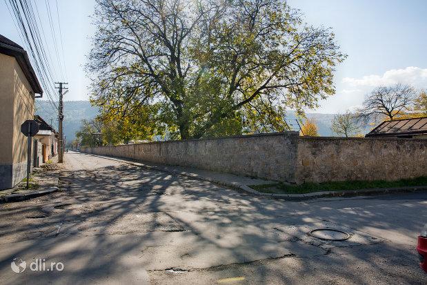 zid-cimitirul-evreiesc-din-sighetu-marmatiei-judetul-maramures.jpg