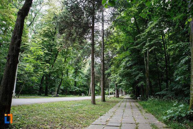 zona-amenajata-cu-copaci-aansamblul-de-arhitectura-balneara-din-buzias-judetul-timis.jpg