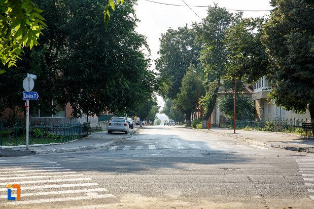zona-centrala-din-orasul-turnu-magurele-judetul-teleorman.jpg