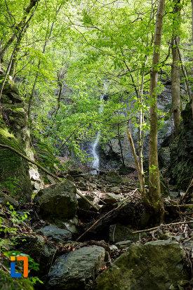 zona-de-munte-aflata-la-cascada-lotrisor-judetul-valcea.jpg