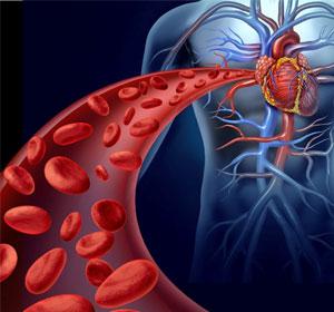 oxigen-sange