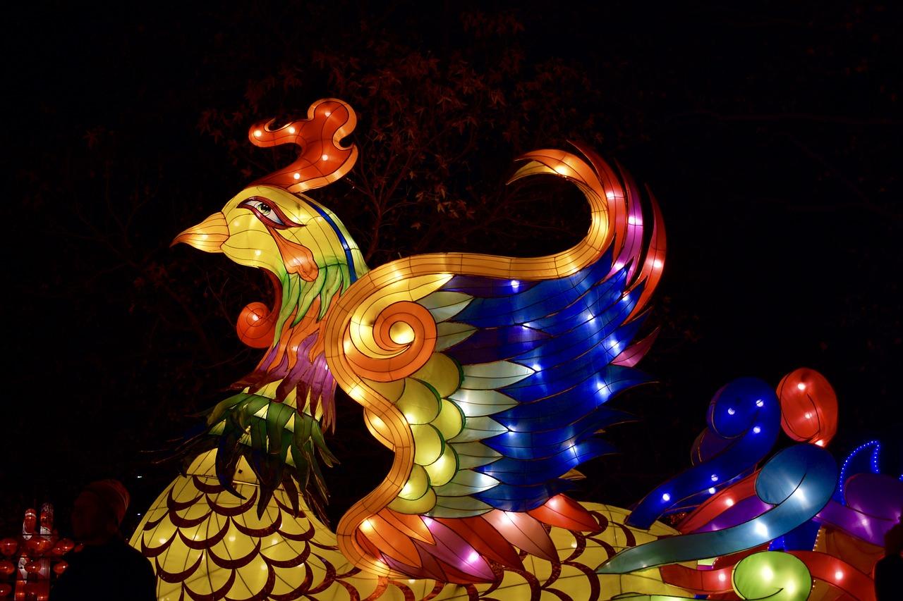 Phoenix Bird1