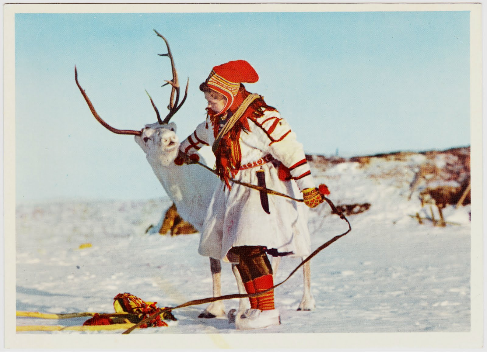 Laponia, femeie sami