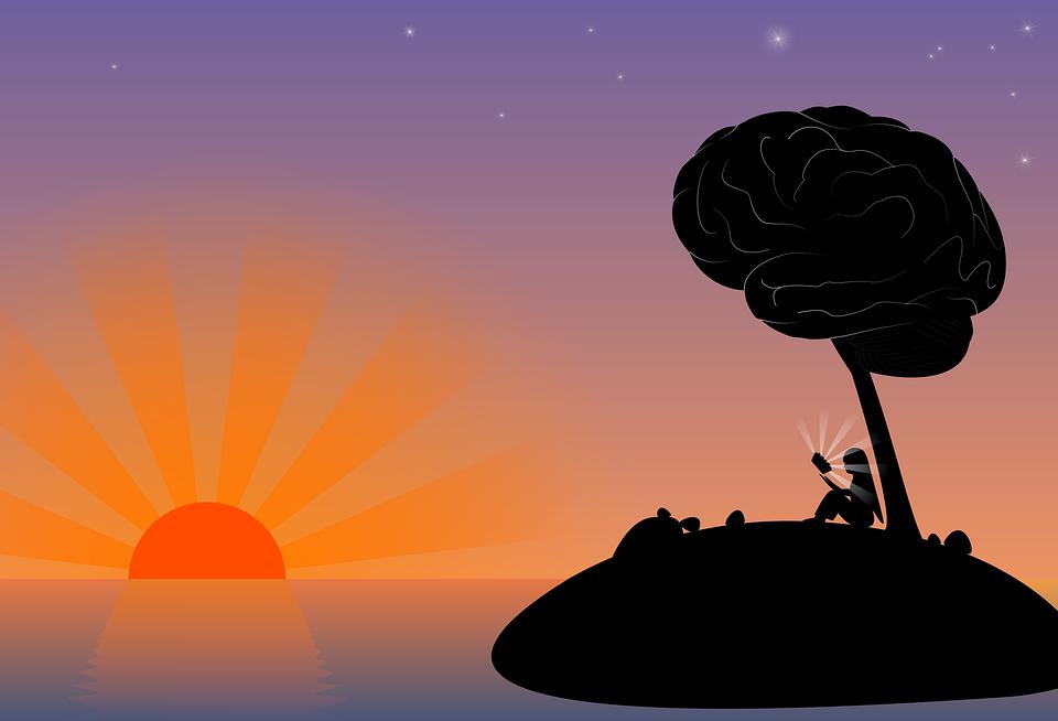 Neuroplasticitatea creierului uman sau despre cum gândurile noastre pot remodela structura şi funcţiile creierului