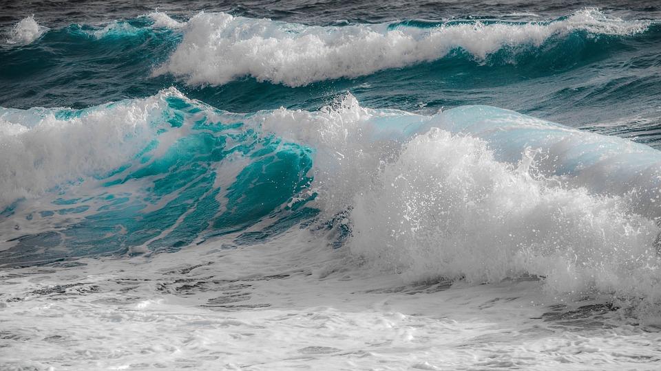 Memoria apei, miracolul vietii