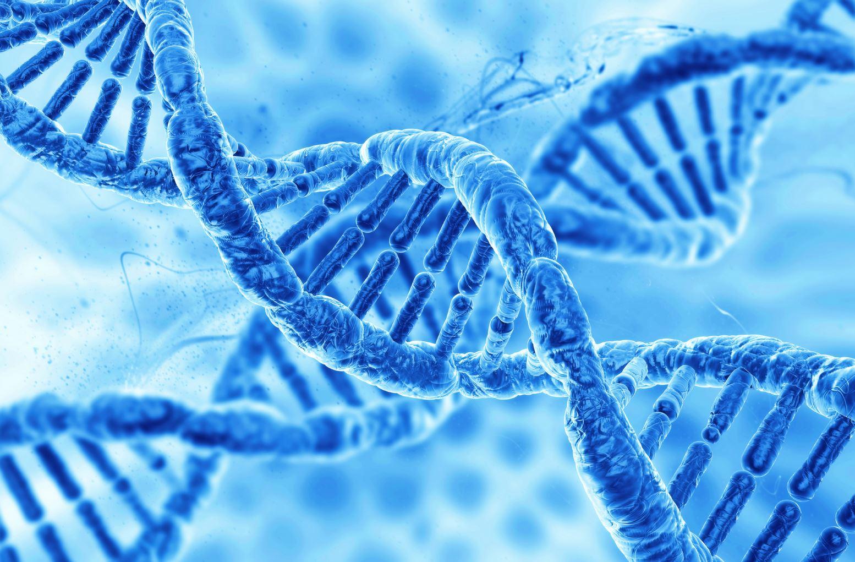 Memoria apei si teleportarea ADN-ului