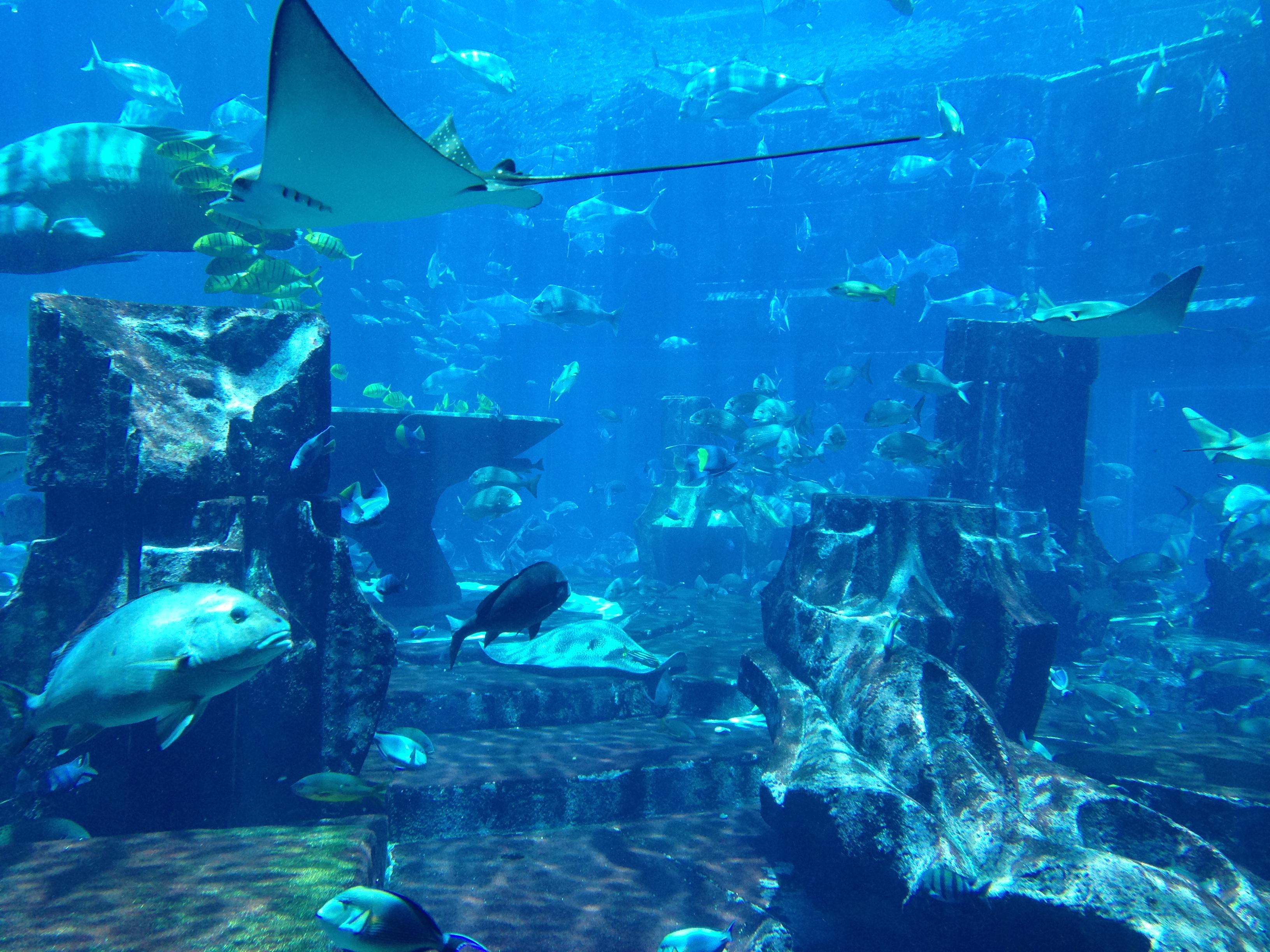 Orase scufundate din vechea Atlantida