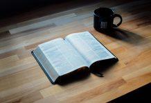 Lapalisadă, un adevăr à la Palice, sensul şi originea cuvântului, expresiei