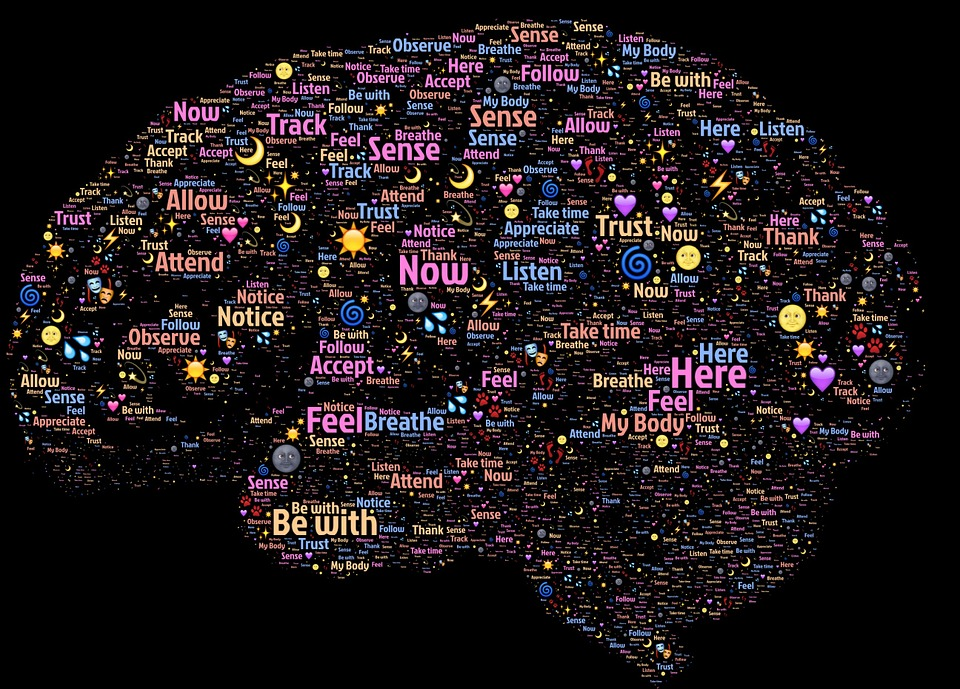Criptomnezia si mecanismele memoriei