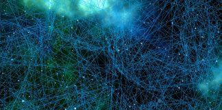 Undele cerebrale si retelele de neuroni