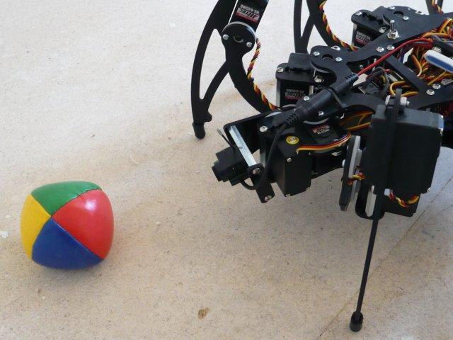 Blob si robotul hexapod