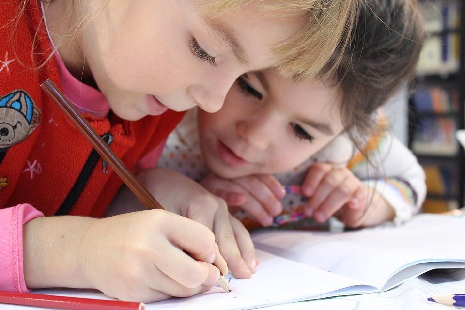 Mecanismele învăţării, de-a lungul intregii vieti