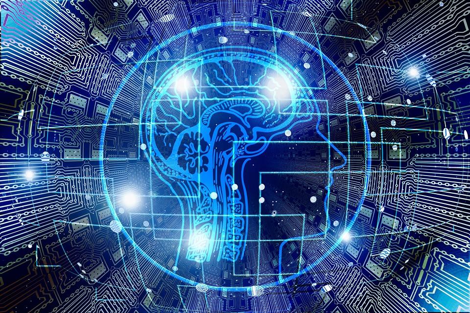 Mecanismele învăţării, experienţe care arată cum modifică învăţarea structura creierului