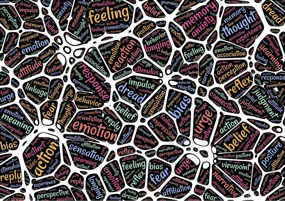 Mecanismele învăţării si functiile creierului