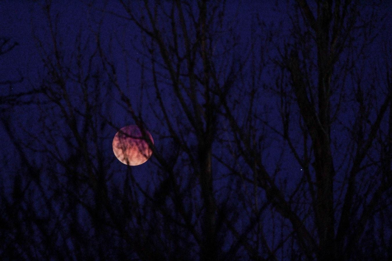 Super Luna sângerie sau Luna Lupului şi eclipsa totală de Lună din 21 ianuarie 2019