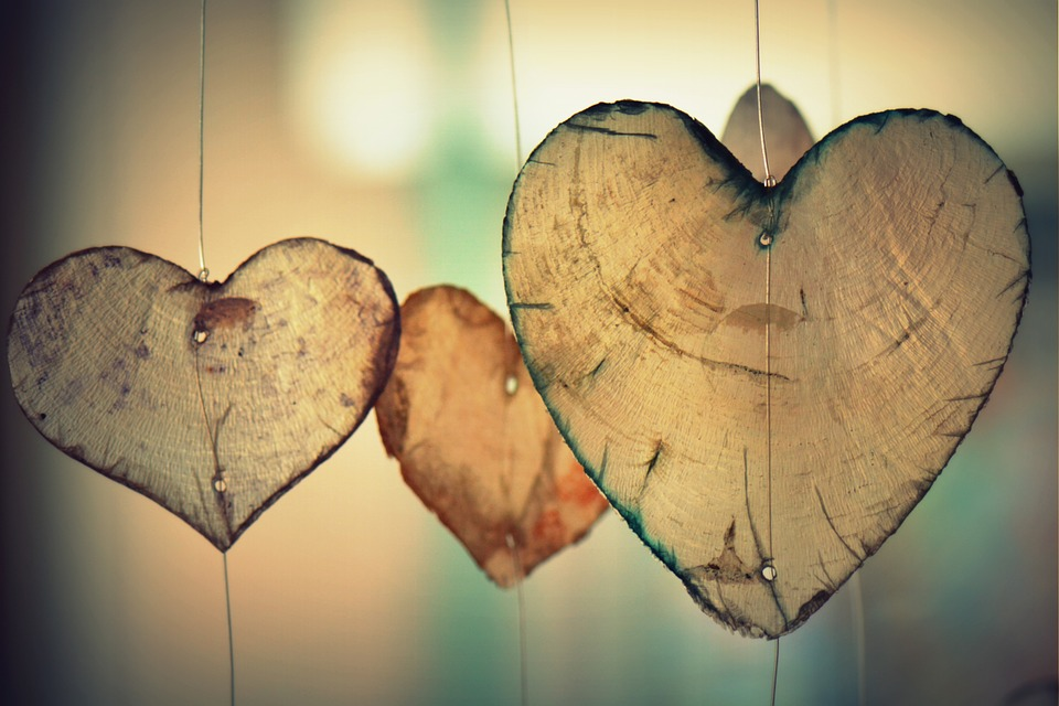 15 aspecte fascinante despre corpul uman, inima