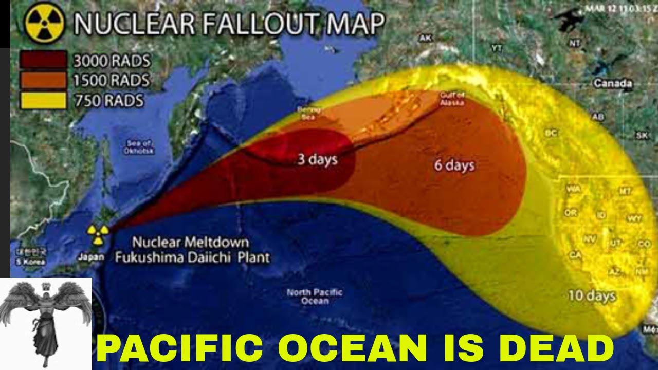 Fukushima, catastrofă naturală sau eroare umană